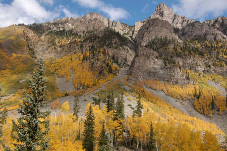 aspen and mountain side photo