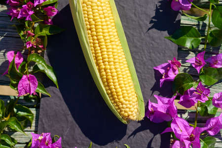 Corn and flowers background