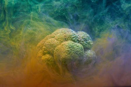 Broccoli and Ink in Water Banco de Imagens - 115259756