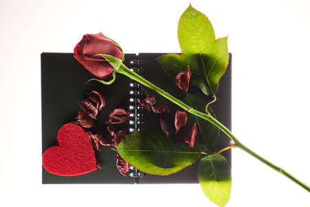 A red rose, dry roses petals with red heart shape on a black book. Valentines concept.