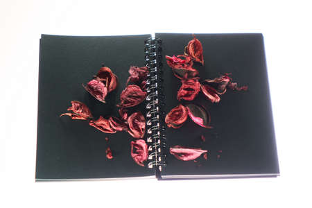 Dry roses petals  on a black book. Valentines concept.
