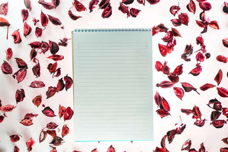 Valentines day background with a blank notepad and rose petals