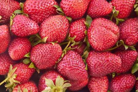 Close up of fresh natural strawberry fruit