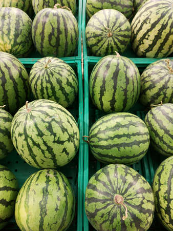 healthy watermelon at the market