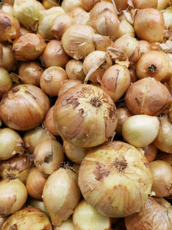 healthy onions at the market Stok Fotoğraf