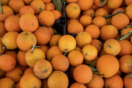fresh and delicious oranges at the market
