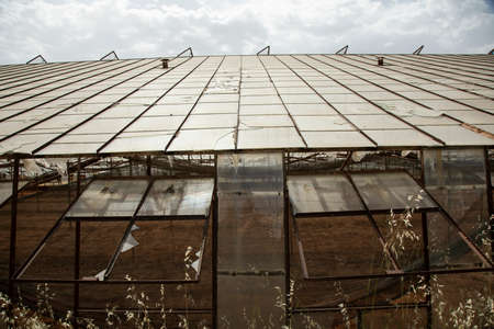 a greenhouse in the countryside