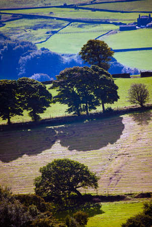 View of the English Countryside photo