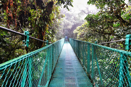 Walking along a suspended bridge in The cloud forest of Selvatura Park in Costa Rica Stock Photo - 17266275
