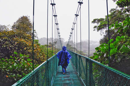 Walking along a suspended bridge in The cloud forest of Selvatura Park in Costa Rica Stock Photo - 17266274