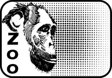 chimpanzee Stock Vector - 5226780