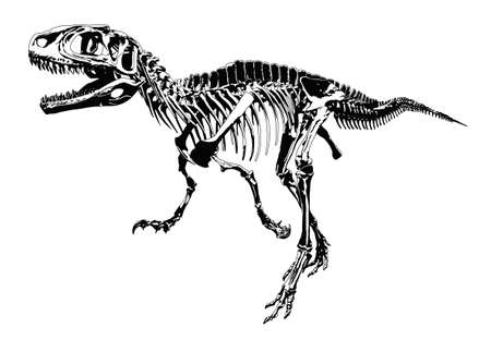 extinction: dinosar skeleton