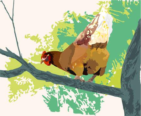 hen on trees Vector
