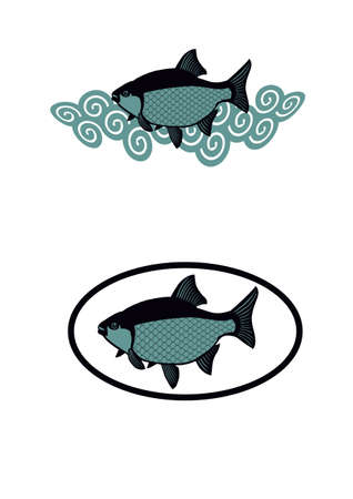 carp illustration Vector