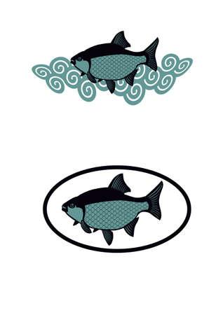 carp fishing: illustrazione di carpa