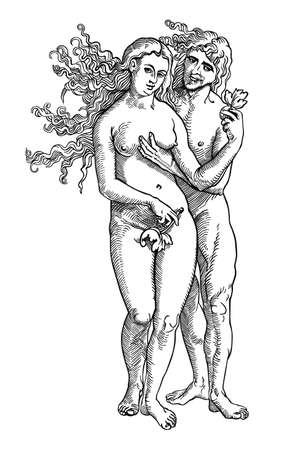 adam: Adam and Eve Illustration