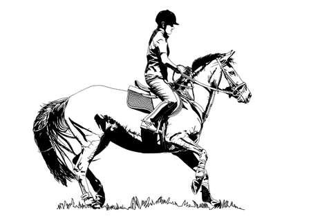 jinete del caballo Ilustración de vector