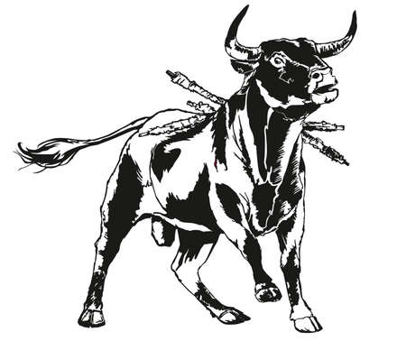 corrida de toros: toros Vectores