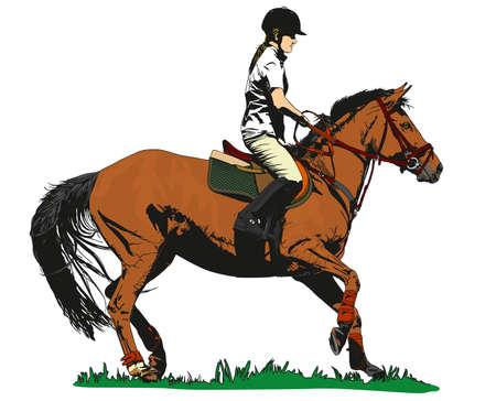 jinete del caballo