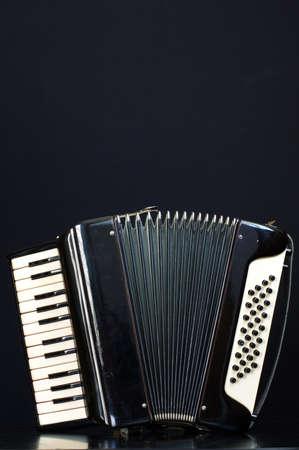 harmonica: harmonica accordion