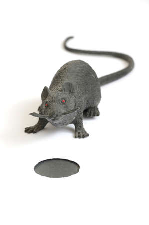 mouse hole: plastic toy mouse