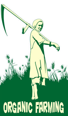 peasant woman: women scythe to mow cereal traditional rural way