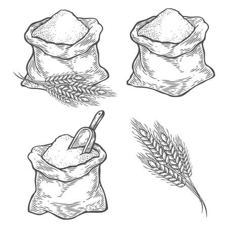 Sack with whole flour or sugar with ear wheat, scoop. Hand drawn sketch style. Vintage black vector engraving illustration set for label, web, flayer bakery shop. Isolated on white background.
