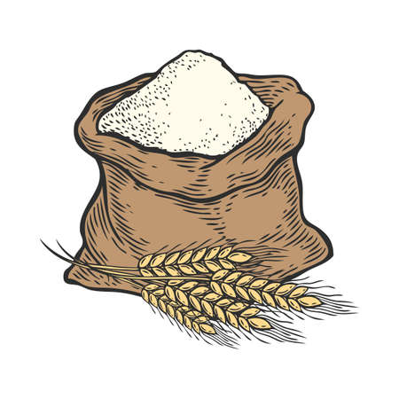 ear of wheat: Sack with whole flour or sugar with ear wheat. Hand drawn sketch style. Vintage black vector engraving illustration for label, web, flayer bakery shop. Isolated on white background.