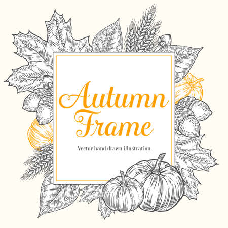 Autumn design for greeting card. Vintage harvest festival autumn elements. Hand drawn vector doodle frame with leaves, acorn, cloves, pumpkins and spica wheat. Orange, white, black.