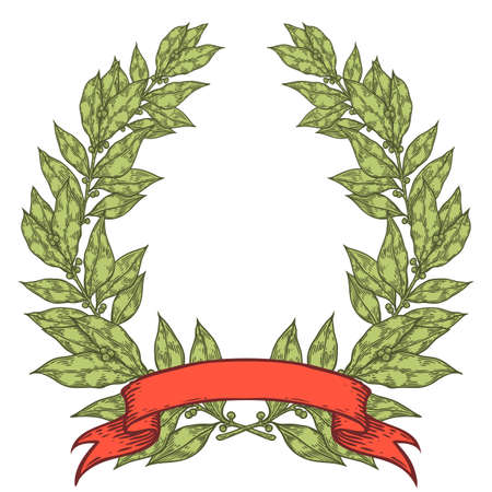 laurel leaf: Laurel green with red ribbon Bay leaf Hand drawn vector illustration. Vintage decorative laurel wreath. Sketch design elements. Perfect for invitations, greeting cards, quotes, blogs, posters and more.