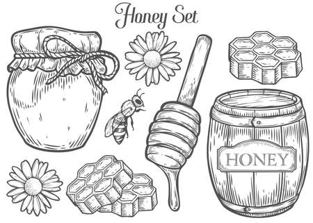 Honey jar, barrel, spoon, bee, honeycomb, chamomile, vintage set. Engraved organic food hand drawn sketch illustration. Black isolated on white background.