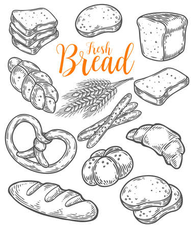 Bread vector hand drawn set illustration. Other types of wheat, flour fresh bread. Gluten food bakery bread engraved collection. Black bake organic food isolated on white background.