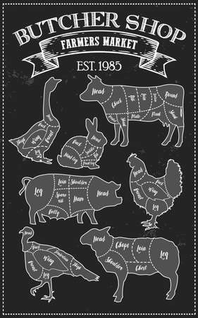 Cutting meat diagram guide cut scheme in vintage style. Chalk illustration graphic element for menu, banner. Steak cow pig chicken rabbit turkey goose duck lamb divided pieces. Silhouettes of animal