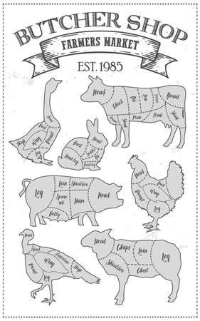 Cutting Meat Diagram Guide Cut Scheme In Vintage Style Chalk