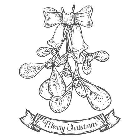 new plant: Hand drawn mistletoe plant with berry. Vector Christmas plant retro vintage style. Romantic Christmas illustration. Greeting card design. Vector new year mistletoe. Winter template.