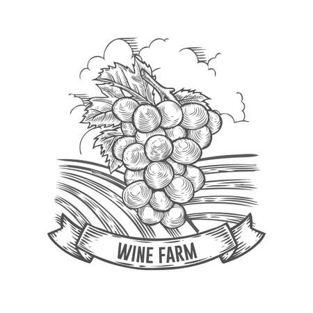 Wine farm badge. Monochrome vintage engraving grape sign isolated on white background. Sketch vector hand drawn illustration.