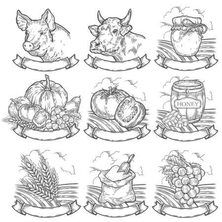 Farmers market, butchery, bakery badges. Retro farm vintage set vintage engraved sign isolated on white background. Sketch vector hand drawn illustration. Locally grown, fresh farm, fresh milk, honey