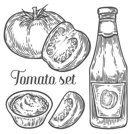 Tomato slise, sauce, ketchup set vector. Isolated on white background. Tomato food ingredient. Engraved hand drawn illustration in retro vintage style. Organic Food, dishes component