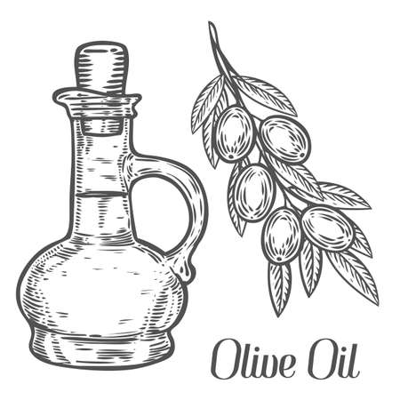 Olive oil bottle, branch with berry and leaf diet plant superfood ingredient. Natural organic hand drawn vector sketch engraved illustration. Olive black, green, oil. Isolated on white background Иллюстрация