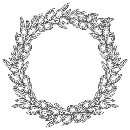 Olive laurel wreath and branch hand drawn vector illustration. Leave and berry round frame isolated on white background.