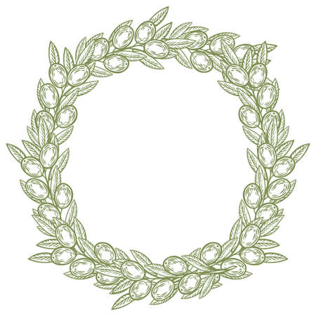 branches with leaves: Olive laurel wreath and branch hand drawn vector illustration. Leave and berry round frame isolated on white background.
