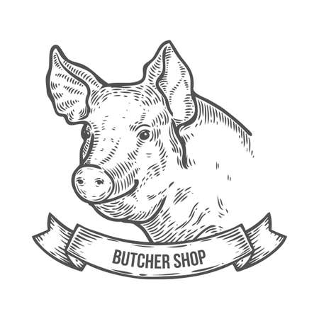 Pig head Butcher shop. Hand drawn sketch in a graphic style. Vintage vector engraving illustration with ribbon for poster, web. Isolated on white background Иллюстрация