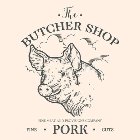 Pig head, Fresh pork organic meat. Hand drawn sketch in a graphic style. Vintage vector engraving illustration for poster, web. Isolated on white background