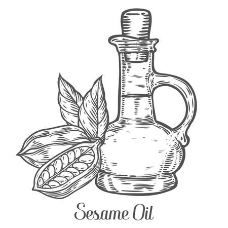 treatment plant: Sesame oil bottle nuts plant, natural organic butter ingredient. Hand drawn vector sketch engraved illustration. Sesame seed isolated on white. Treatment, care, food ingredient