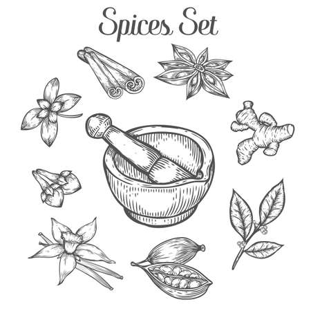 Mortar and pestle with spices. Hand drawn sketch vector retro vintage illustration. Bowl, vessel for milling spice and medical herbs. Hand mill. Isolated on white background Фото со стока - 68407940