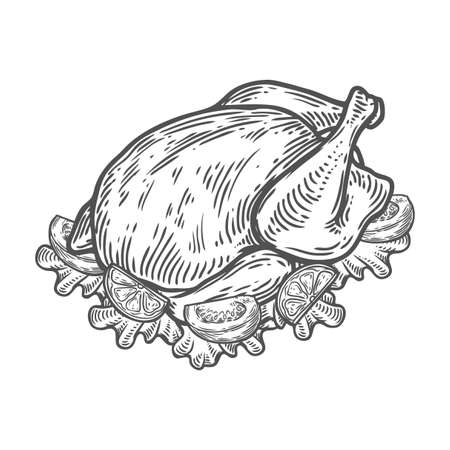Grilled Roasted chicken, turkey, duck. Organic Food hand drawn vector sketch engraved illustration. Isolated on white background Illustration