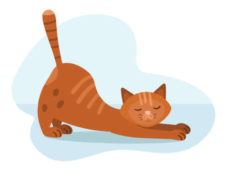 Red tabby cat stretches after sleep. Simple illustration in cartoon style.