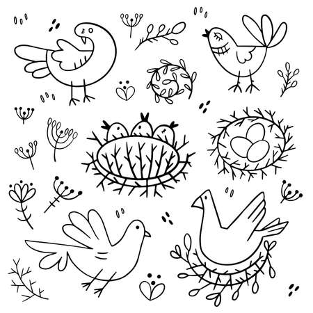 Set of images of birds. Design elements in doodle style. Natural style, branches, plants, eggs, nests.