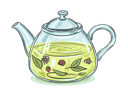Illustration of a glass teapot with herbal tea. Color picture on a white background. Black outline.  イラスト・ベクター素材