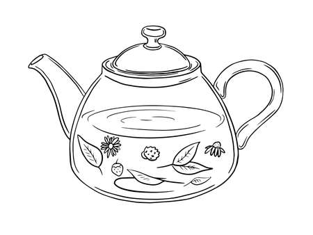 Illustration of a glass teapot with herbal tea. Monochrome picture on a white background. Black outline.  イラスト・ベクター素材